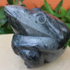 Bull Frog by Fungai Mwarowa Not for sale
